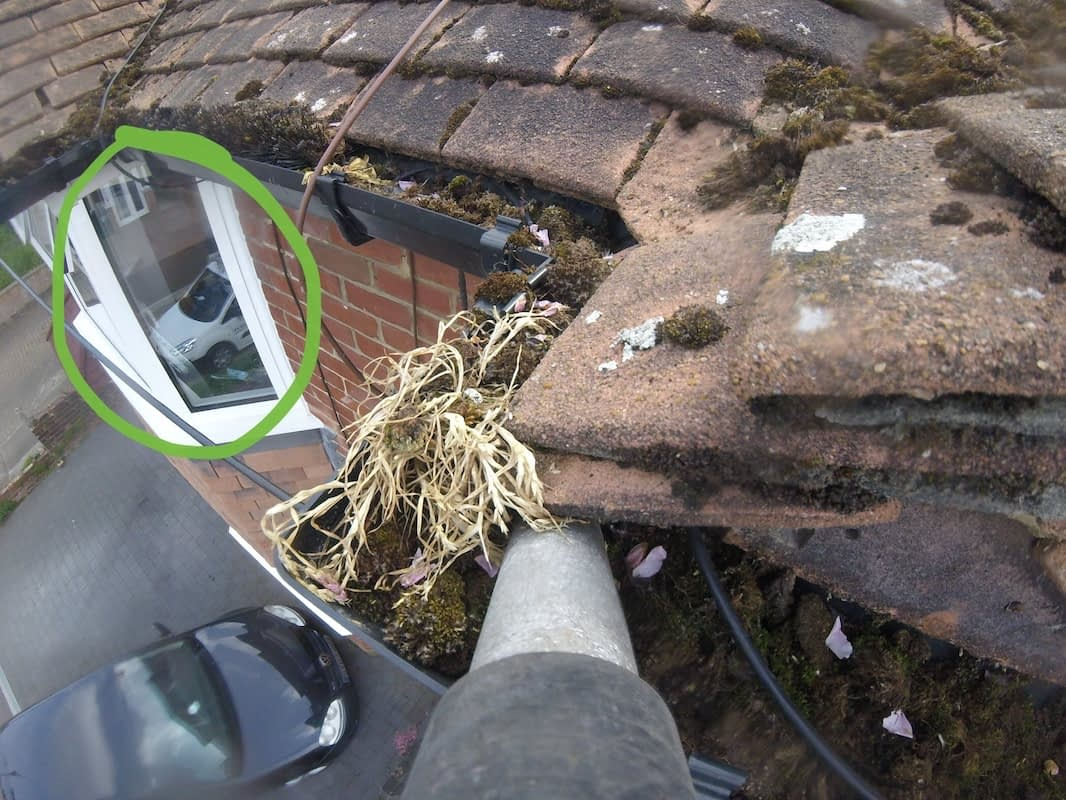 The view of the gutter before we started our clean